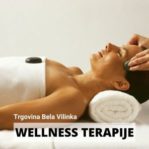 Wellness Terapije